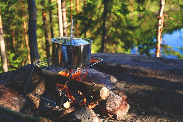 Campfire in the forest with a metal pot above wooden logs on fire with trees in the background.