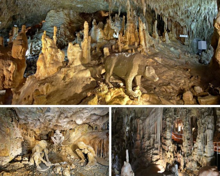 Collage of Petralona Cave from the stalactite and stalagmite in the cave and a reconstruction of a bear in the cave.