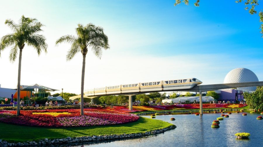 A train passing over a body of water with a palm tree in a middle of a garden on the left side in front of the train tracks in a park in Orlando, Florida.
