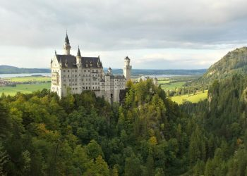 Neuschwanstein castle on a hill in a forest.