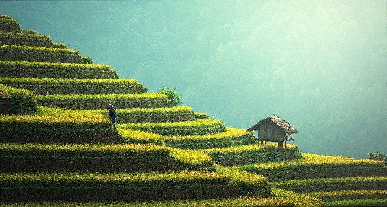 Quiz: Which Asian countries should you visit?