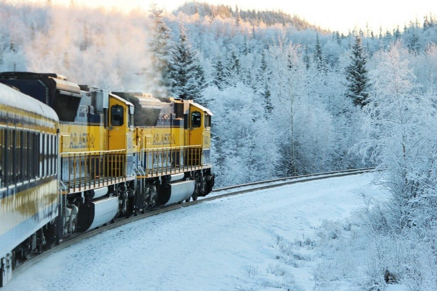 Train in Alaska with snow on trees